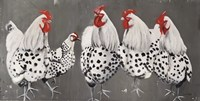 Chook, Chook, Chook Fine-Art Print