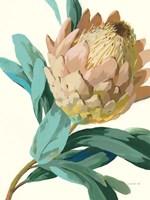 Jewel of the Garden I Fine-Art Print
