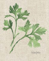 Italian Parsley v2 on Burlap Fine-Art Print