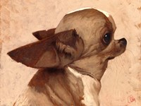 Profile-Chihuahua Fine-Art Print