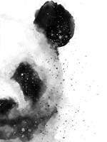 Panda At Attention Fine-Art Print