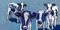 Four Cows Fine-Art Print