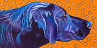 Lab With Orange Fine-Art Print