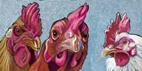 Three Chicks Fine-Art Print