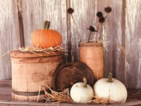 Autumn Pumpkins Fine-Art Print