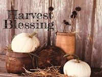 Harvest Blessings Fine-Art Print