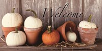 Welcome Pumpkin Shelf Fine-Art Print