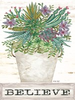 Believe Succulents Fine-Art Print