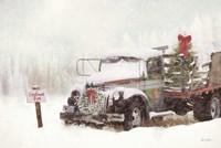 Wyoming Tree Farm Fine-Art Print