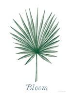 Botanic Inspiration II Fine-Art Print