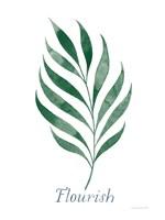 Botanic Inspiration I Fine-Art Print