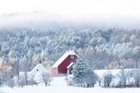 Snowy Valley Fine-Art Print
