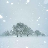 Winter Landscape I Fine-Art Print