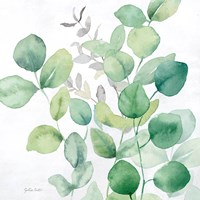 Eucalyptus Leaves I Fine-Art Print