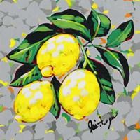 Fruit Sketch Lemons Fine-Art Print