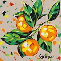 Fruit Sketch Oranges Fine-Art Print