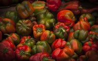 Red Peppers Fine-Art Print