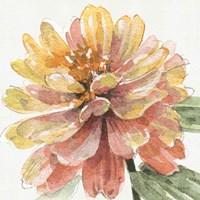Fall Meadow VIII Fine-Art Print