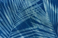 Cyanotype Tropical VIII Fine-Art Print