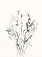 Delicate Sage Botanical V Fine-Art Print