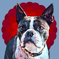 Pop Dog VII Fine-Art Print