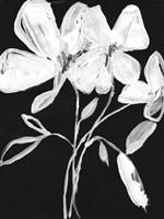 White Whimsical Flowers I Fine-Art Print