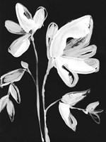 White Whimsical Flowers II Fine-Art Print