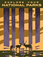 American Wayfarer II Fine-Art Print