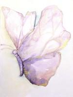 Dulzura Mariposa I Fine-Art Print