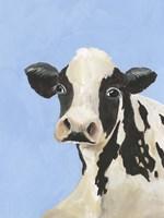 Cow-don Bleu III Fine-Art Print