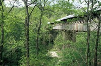 Horton Mill Covered Bridge, Alabama Fine-Art Print