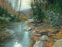 Downstream Fine-Art Print