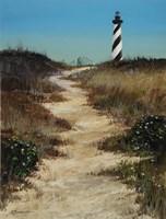 Cape Hatteras Path Fine-Art Print