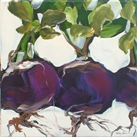 Turnips Fine-Art Print