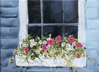 Window Box I Fine-Art Print