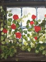 Window Box IV Fine-Art Print