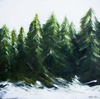 Evergreens Fine-Art Print