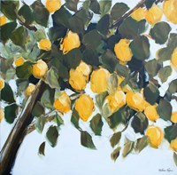 Lemon Tree Fine-Art Print