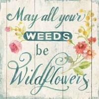 Full Bloom XII Floral Fine-Art Print