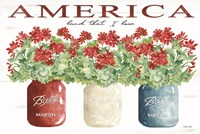 America Glass Jars Fine-Art Print