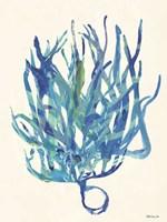 Coral Medley 2 Fine-Art Print