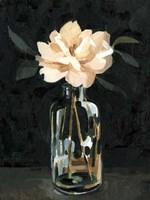 Dark Rose Arrangement I Fine-Art Print