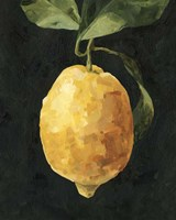 Dark Lemon I Fine-Art Print