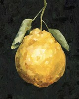 Dark Lemon II Fine-Art Print