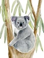 Woodland Koala II Fine-Art Print