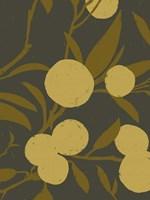 Golden Satsuma II Fine-Art Print