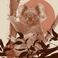 Pop Art Koala II Fine-Art Print