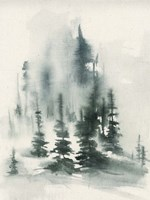 Misty Winter I Fine-Art Print
