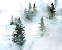 Foggy Evergreens I Fine-Art Print