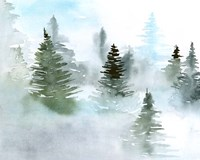 Foggy Evergreens II Fine-Art Print